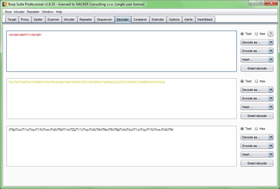Screenshot: Burp Suite